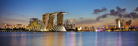 祝贺刘女士赴新加坡工作申请成功离境